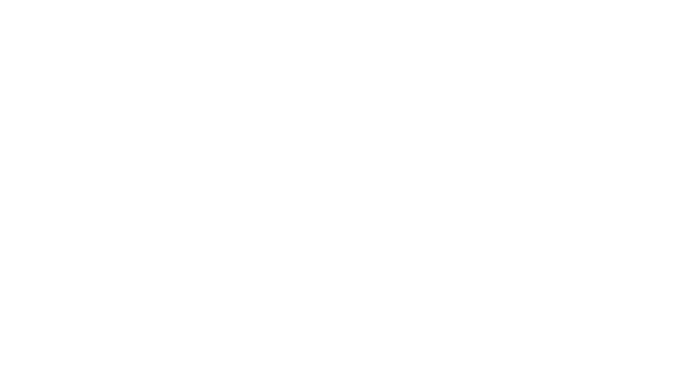 Institut vierplus